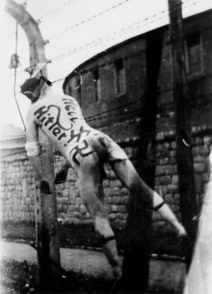 """Die erhabene Leiche vom Franz Ziereis, nach der Folterung und Ermordung, unter Verantwortung und Zustimmung des nicht angeklagten Kriegsverbrechers Richard Seibel, Oberst in der """"11. American Armored Division."""
